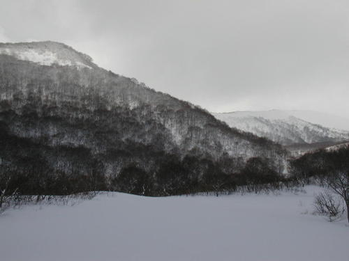 2009117_3