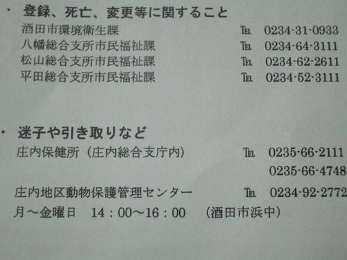 Fuku6_005