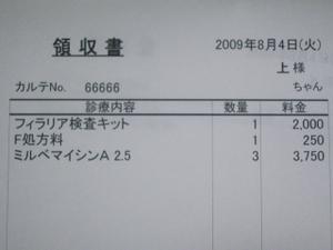 A_006