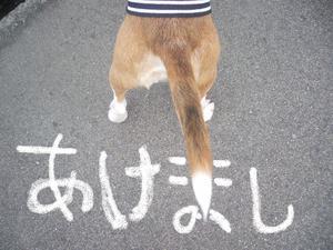 Fuku_akeome